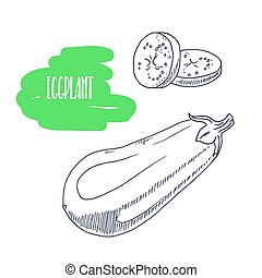 Hand drawn eggplant isolated on white. Sketch style vegetables with slices for market, kitchen or food package design