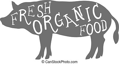 Hand Drawn Farm Animal Pig. Fresh Organic Food Lettering. Vector