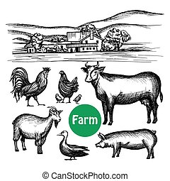 Hand Drawn Farm Set