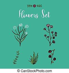 Hand drawn flowers set