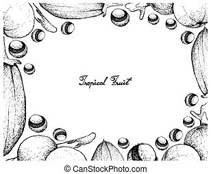 Hand Drawn Frame of Baobab and Cambuca Fruits