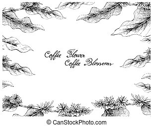 Hand Drawn Frame of Coffee Flowers on White Background -...