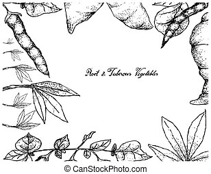 Root and Tuberous Vegetables, Illustration Hand Drawn Sketch of Cassava and Ahipa Plants Isolated on White Background.