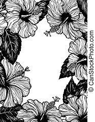 Hand drawn frame of hibiscus flowers