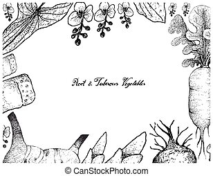 Hand Drawn Frame of Root and Tuberous Vegetables - Root and...