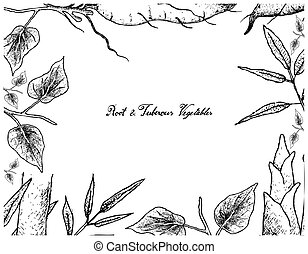 Hand Drawn Frame of Sweet Potato and Bamboo Shoot - Root and...