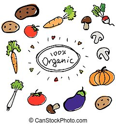 hand drawn fresh color vegetables