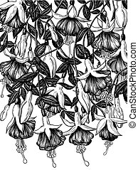 Hand drawn fuchsia flowers