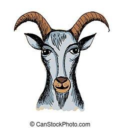 Hand drawn Goat