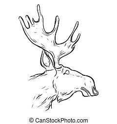 Hand drawn graphic moose