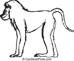 hand drawn, grunge, sketch illustration of baboon