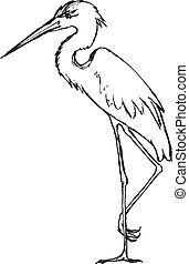 hand drawn, grunge, sketch illustration of heron - heron,...