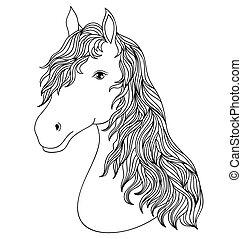 Hand drawn head of horse