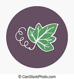 hand-drawn, hoja uva, icon., vector, ilustración, aislado, en, el, fondo.