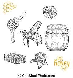 Hand drawn honey set over white background