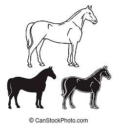 Hand drawn horse set. Vector illust