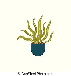 Hand drawn house plant with long wavy leaves isolated on white background