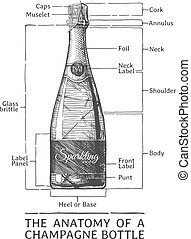 Hand drawn Illustration of Champagne bottle