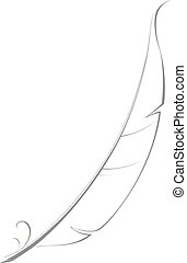 Hand drawn illustration of feather for writing.