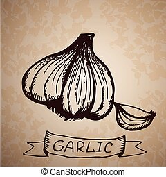 Hand drawn illustration with garlic isolated