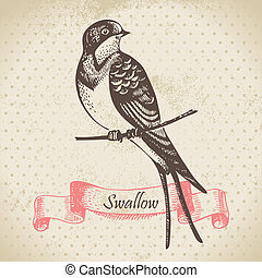 hand-drawn, ilustracja, jaskółka, ptak