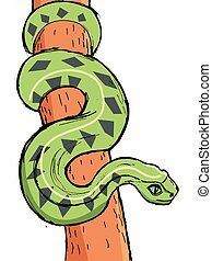 Hand drawn image of Amazonian anaconda