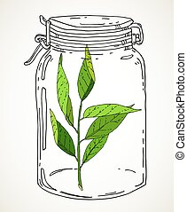 Hand drawn jar with green branch