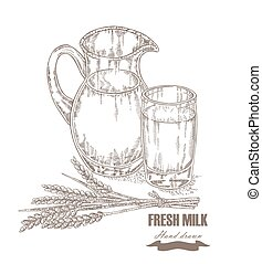 Hand drawn jug and glass of milk with wheat ears isolated. Vector illustration sketch