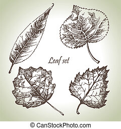 Hand drawn leaf set