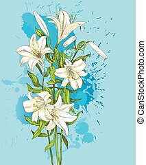 hand-drawn lily on blue  background