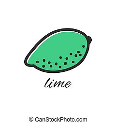 Hand drawn lime in doodle style. Vector illustration. Sketch