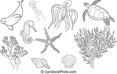 Hand drawn lineart sea life set