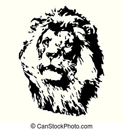 Hand drawn Lion illustration. Vector for t shirt printing, graphic tee and printed tee.