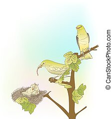hand drawn little green birds feeding their young in the nest