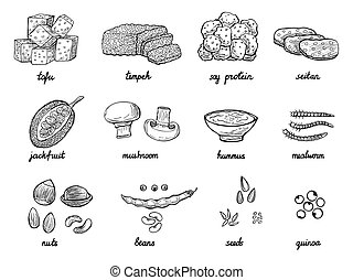 hand drawn meat alternative or analogue for vegans, vegetarians, healthy eating in vector