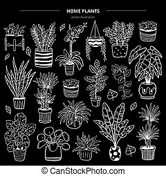 Hand-drawn monochrome plants in pots on black background. Vector illustration with flowers, cactus, and succulents. Natural design elements can be used for postcards, banners, websites or ads.