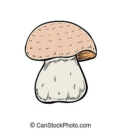 Hand drawn mushroom vector colorful sketch. Collection of...