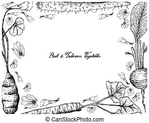 Hand Drawn of Chinese Yam on White Background - Root and ...