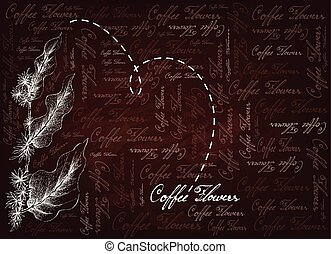 Hand Drawn of Coffee Flowers on Brown Background -...