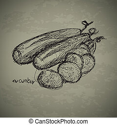 Hand drawn of cucumbers