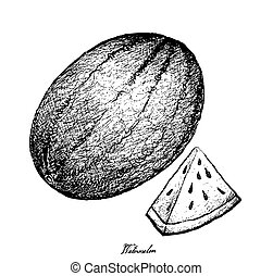 Hand Drawn of Fresh Watermelon on White Background