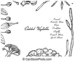 Hand Drawn of Podded Vegetables Frame on White Background -...