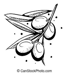 Hand-drawn olive branch.