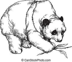 hand drawn panda