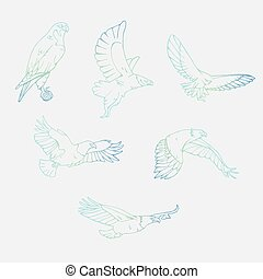 Hand-drawn pencil graphics. Birds of prey set. - Birds of...