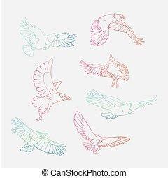 Hand-drawn pencil graphics. Birds of prey set. - Birds of...