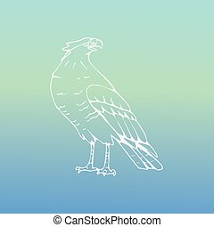 Hand-drawn pencil graphics, vulture, eagle, osprey, falcon,...