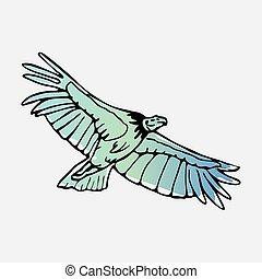 Hand-drawn pencil graphics, vulture, eagle, osprey, falcon,...