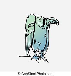 Hand-drawn pencil graphics, vulture, eagle, osprey, falcon, hawk, bird predator