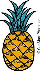 Hand drawn pineapple. Vector illustration